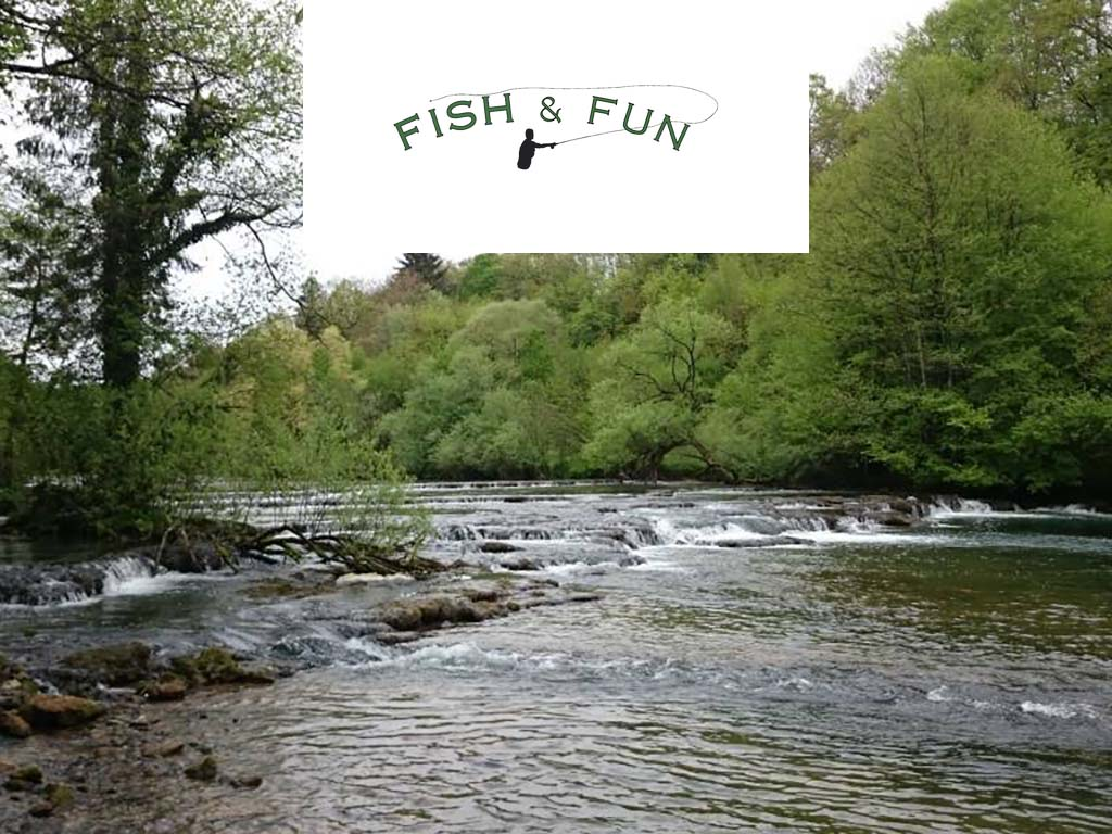 Fish and Fun