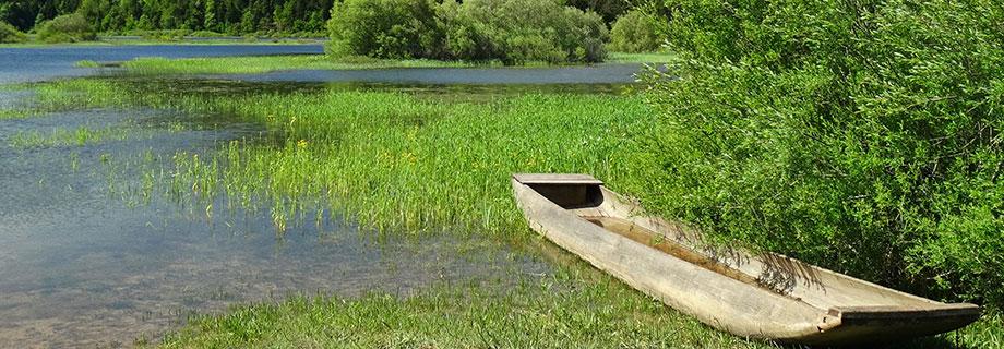 Cerkniško jezero-zahodni del