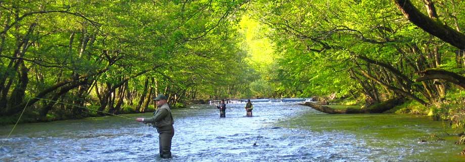 dovolilnice-ribiska-druzina-ilirska-bistrica-ribiske-karte-reka.jpg