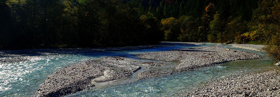 Potok Pišnica (07)