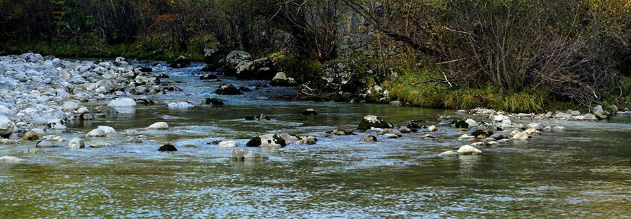 Reka Radovna (016)
