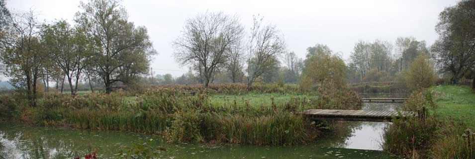 Ribčev ribnik pri Bistri