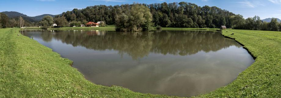 ribnik Reš