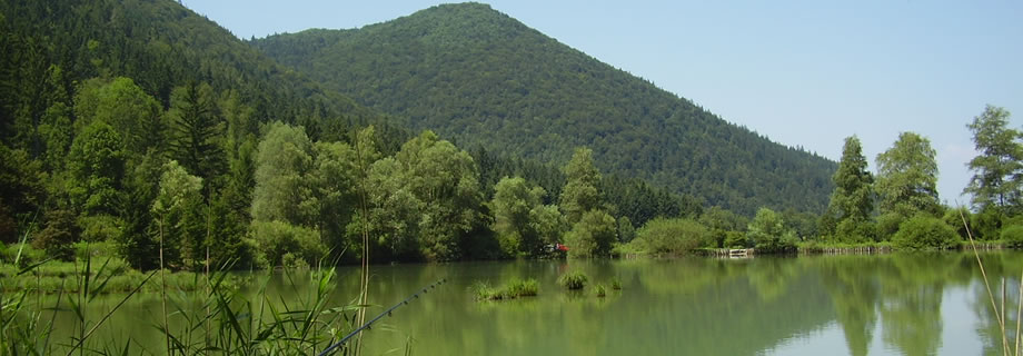 ribnik Strahomer